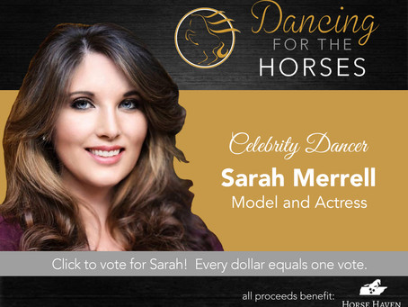 DANCING FOR THE HORSES