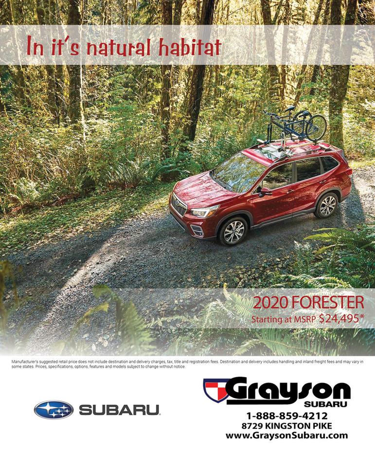 Grayson Subaru Forester