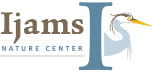 UPCOMING EVENTS SPOTLIGHT: IJAMS, KNOXVILLE MUSEUM OF ART & FIRST FRIDAY KNOXVILLE