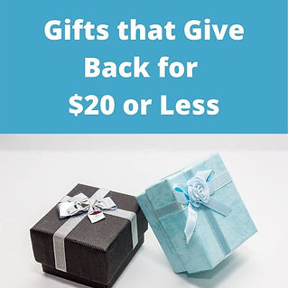 Gifts that Give Back for $20 or Less.jpg