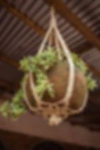 Mango + Main plant hanger. Fair trade and handmade in Rwanda. https://mangoandmain.com/collections/for-the-home/products/full-circle-plant-hangers