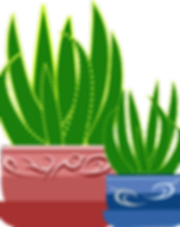 Potted Plant free Pixabay graphic.png