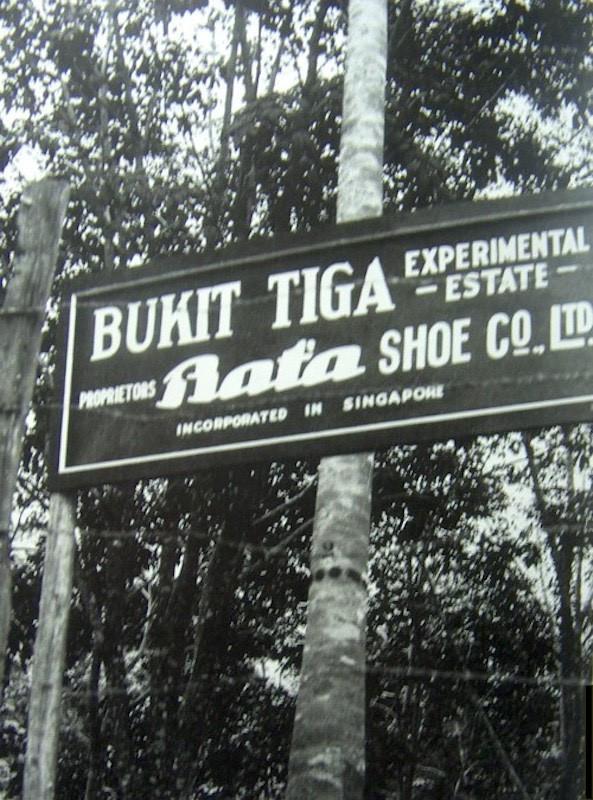 Bata property in Singapore (kopie).jpg