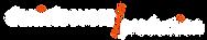 dsp_logo_TransparentOnBlack.png