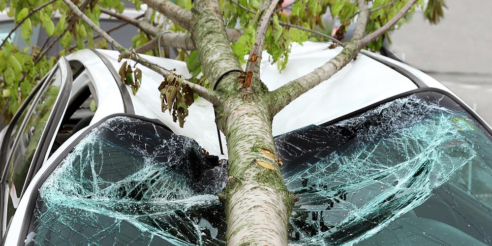 A természeti károk anyagi következményeitől óvhatod meg magad és az értékeidet, ha a számodra megfelelő biztosítás védelmét választod