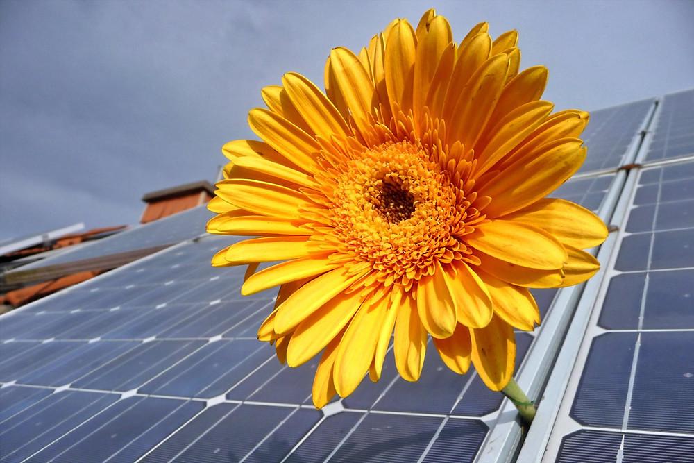 az, aki megfelel a program feltételeinek, akár 3 millió forintnyi állami utófinanszírozást igényelhet az otthonára telepített napelemes rendszerhez, emellett pedig a szaldós elszámolást is választhatja.