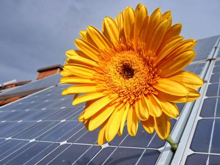 Választható marad a szaldós elszámolás a támogatással épült napelemrendszerekre
