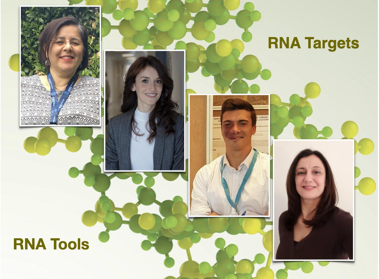 Advisory Pre-Accelerazione, Terapie basate sull'RNA