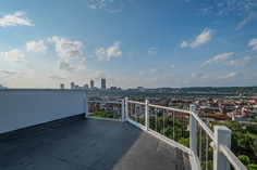 65 pius st, pittsburgh, pa 15203 (31 of