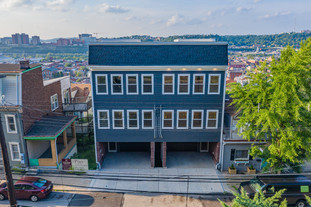 65 pius st, pittsburgh, pa 15203 (37 of