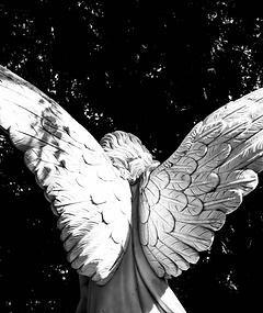 angel-2683074_1920_edited.png