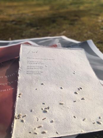 種を漉き込んだ seed paper