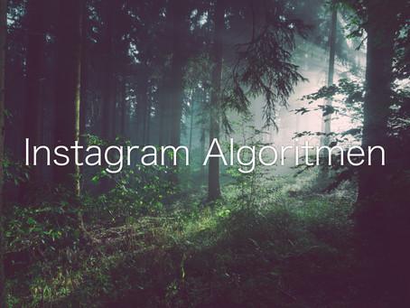 Hvordan Instagram Algoritmen fungerer