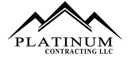 Platinum logo.jpg