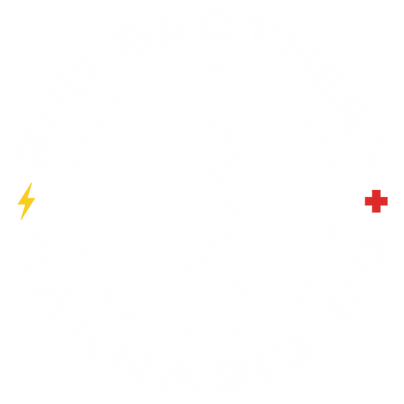 Bud Brothers_Logo 1_White.png