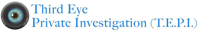 Third Eye Private Investigation LOGO