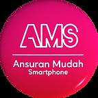 AMS-3D Logo.png