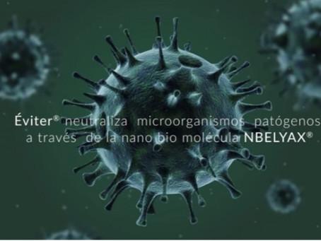 Nbelyax, la nanomolécula Mexicana que puede frenar al coronavirus (video)