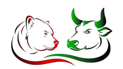 Bear-Bull_edited.jpg