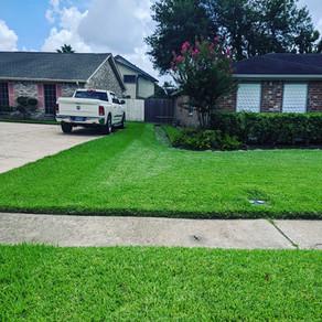 Flono's Lawn & Maintenance Care