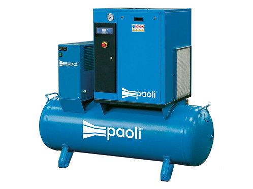 Компрессор низкого давления | DPL500E - 11.0V ES