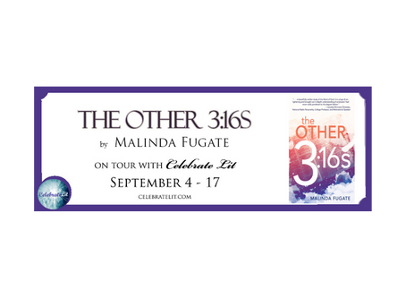 The Other 3:16s by Malinda Fugate