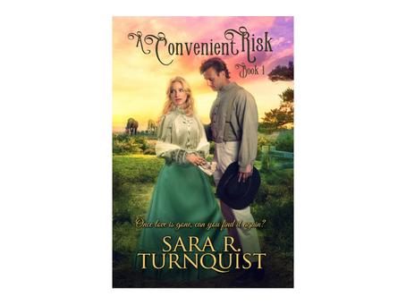 A Convenient Risk by Sara R. Turnquist