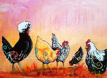 Dani's Chicken Yard.jpg