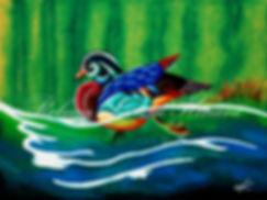 Wood Duck email-watermark.jpg