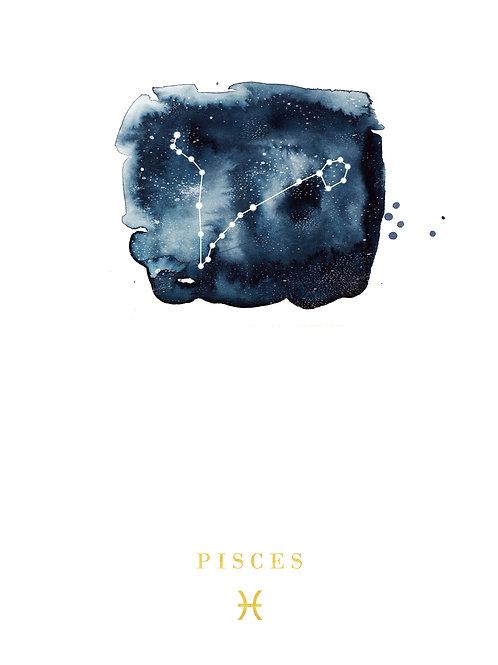 Pisces Zodiac Constellation Illustration