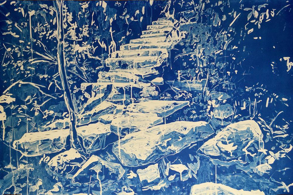 Scott Stephens - Untitled - Cyanotype 35 x 43 web.jpg