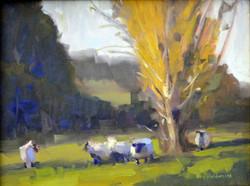 Renee-Holderness_Sheep_oil-on-canvas.jpg