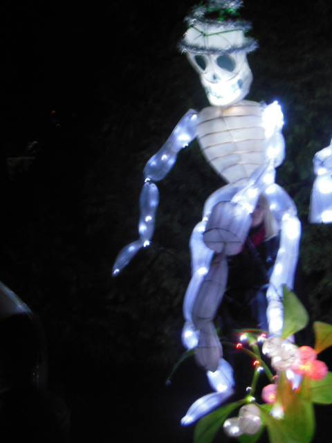 Skeleton lantern
