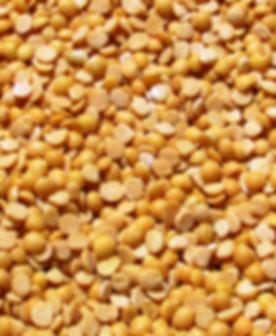 plant-farm-grain-seed-bean-ripe-981923-p