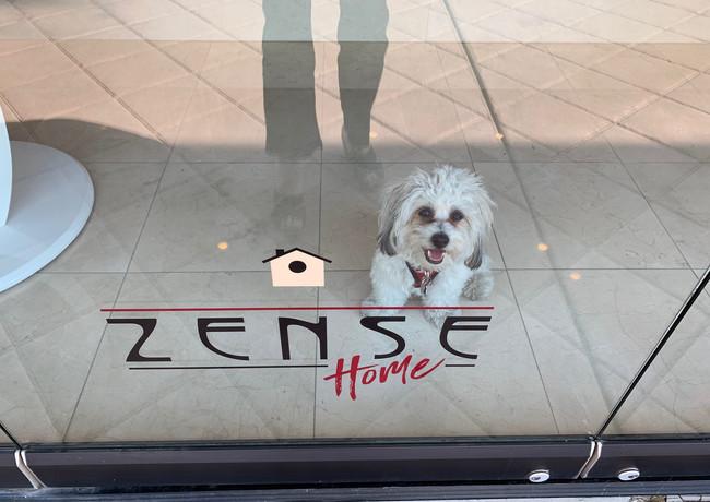 ZenseHome-Mascot-PalmDesert.jpg