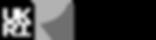 UKRI_AHR_Council-Logo_Horiz-Grayscale.pn