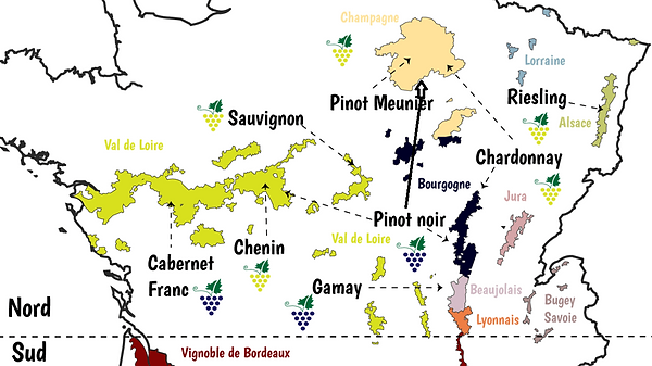 cépage-nord.png