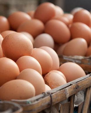 Eggs_Pile.jpg