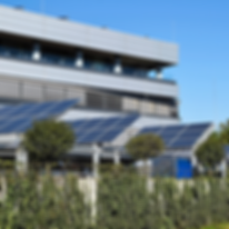 negocio con paneles solares