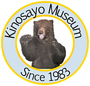 kinosayo museum_edited.png