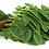 Thumbnail: Organic Moringa Oleifera Leaf Powder Capsules