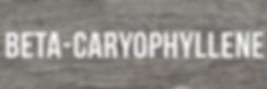 Beta-Caryophyllene.png