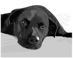Pup_Print.jpg