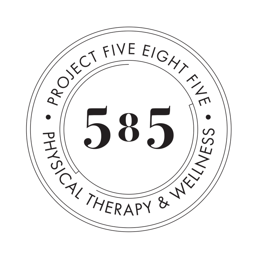 Project 585 Logo.png