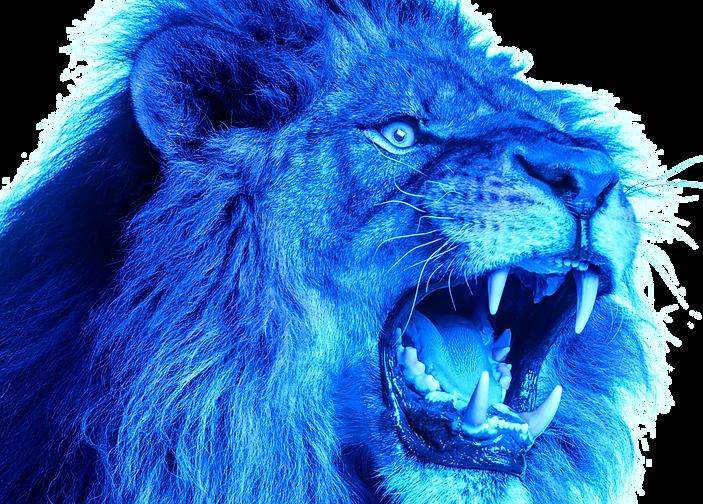BlueLion Head.png