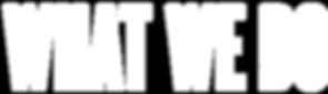 what-we-do-logo__medium.png