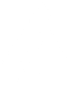 APIpax Logo Graphics_white.png