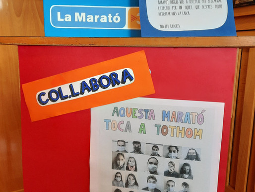 COL·LABORA AMB LA MARATÓ DE TV3!