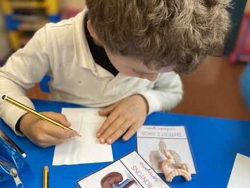 Racons d'escriptura sobre el cos humà