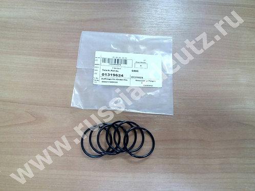 Уплотнительное кольцо Deutz 01319624